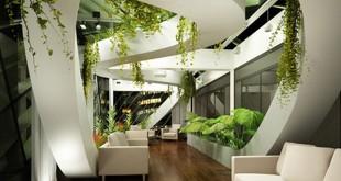 plante bureau entreprise pme