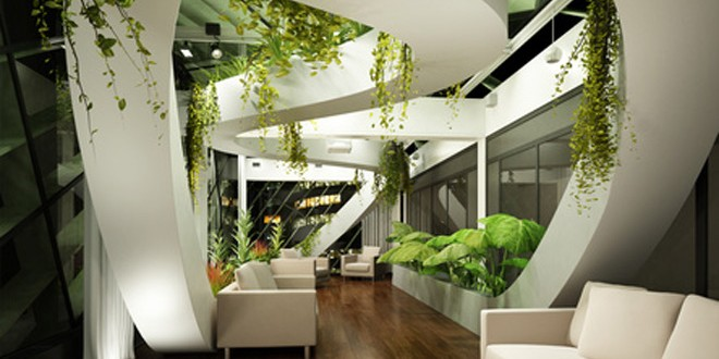 Comment choisir une plante pour son bureau?