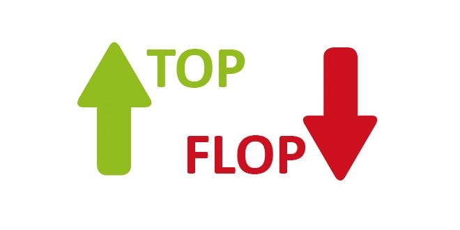 Les Tops et les Flops des TPE en 2012